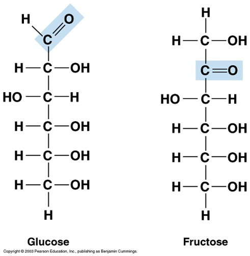 Glucose and Fructose molecules
