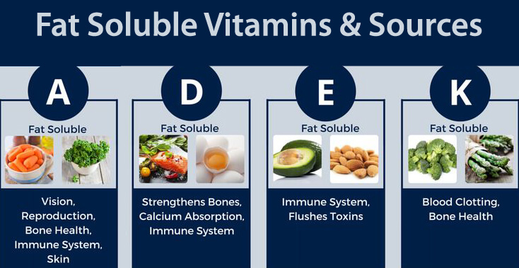 water soluble and fat solube obtained by diet